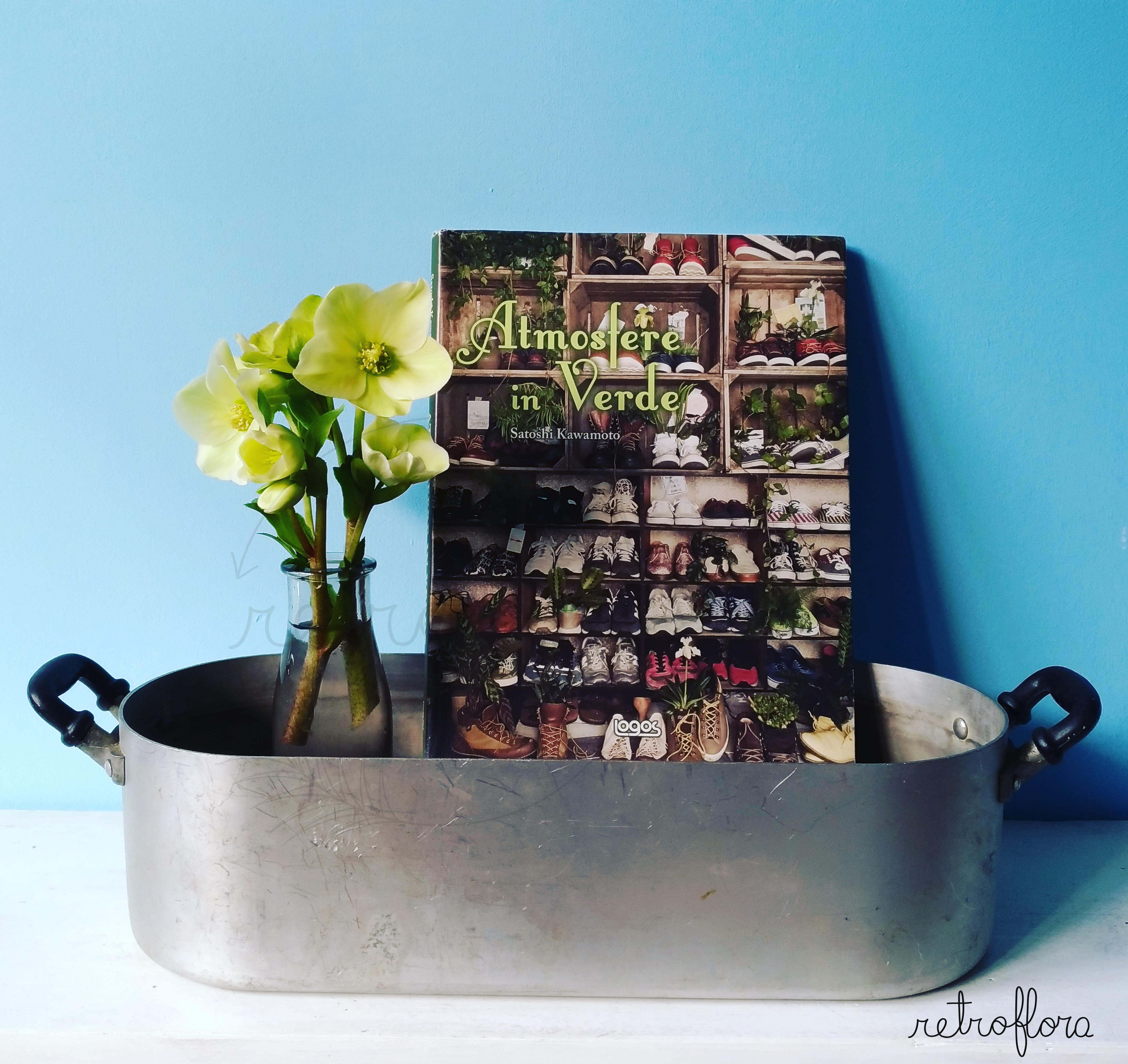Atmosfere in Verde, Libro, Recensione, Satoshi Kawamoto, Deco Room with Plants, Libro sui Fiori