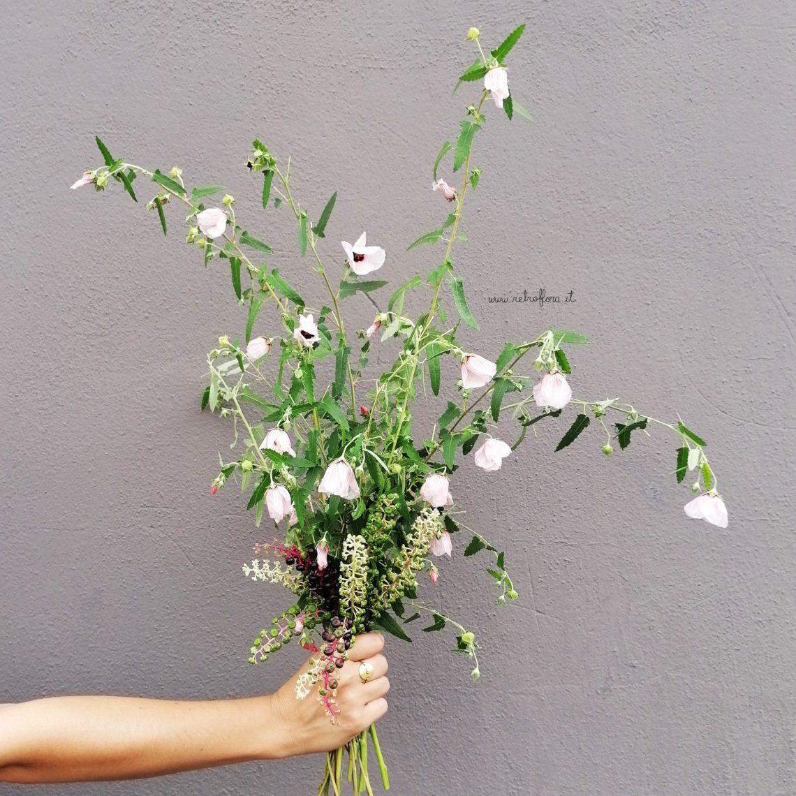 come trattare i fiori recisi, mazzo pavonia, pavonia. gentilezza, cura