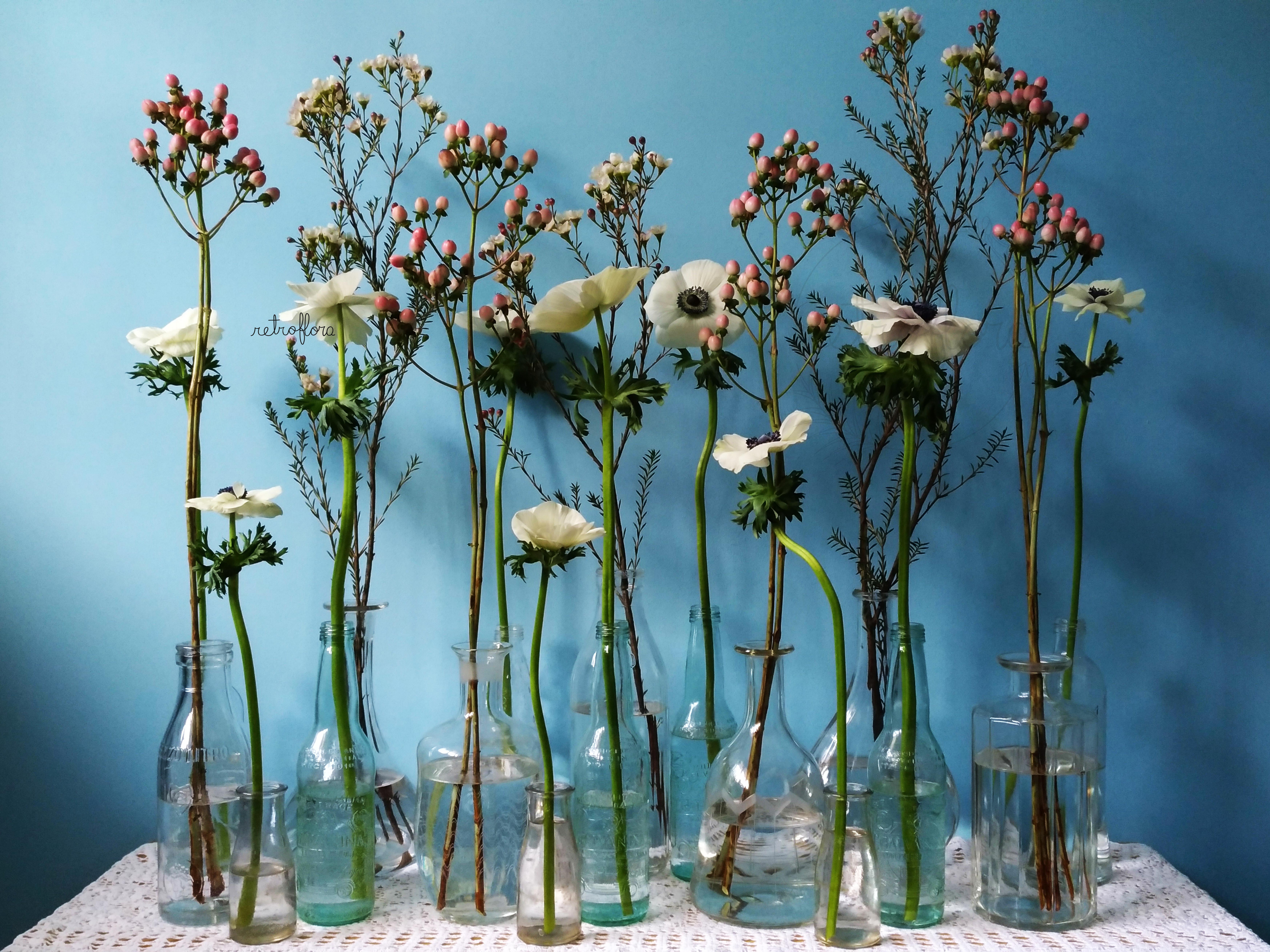 La Mensola Fiorita Anemoni e Iperico - Retroflora