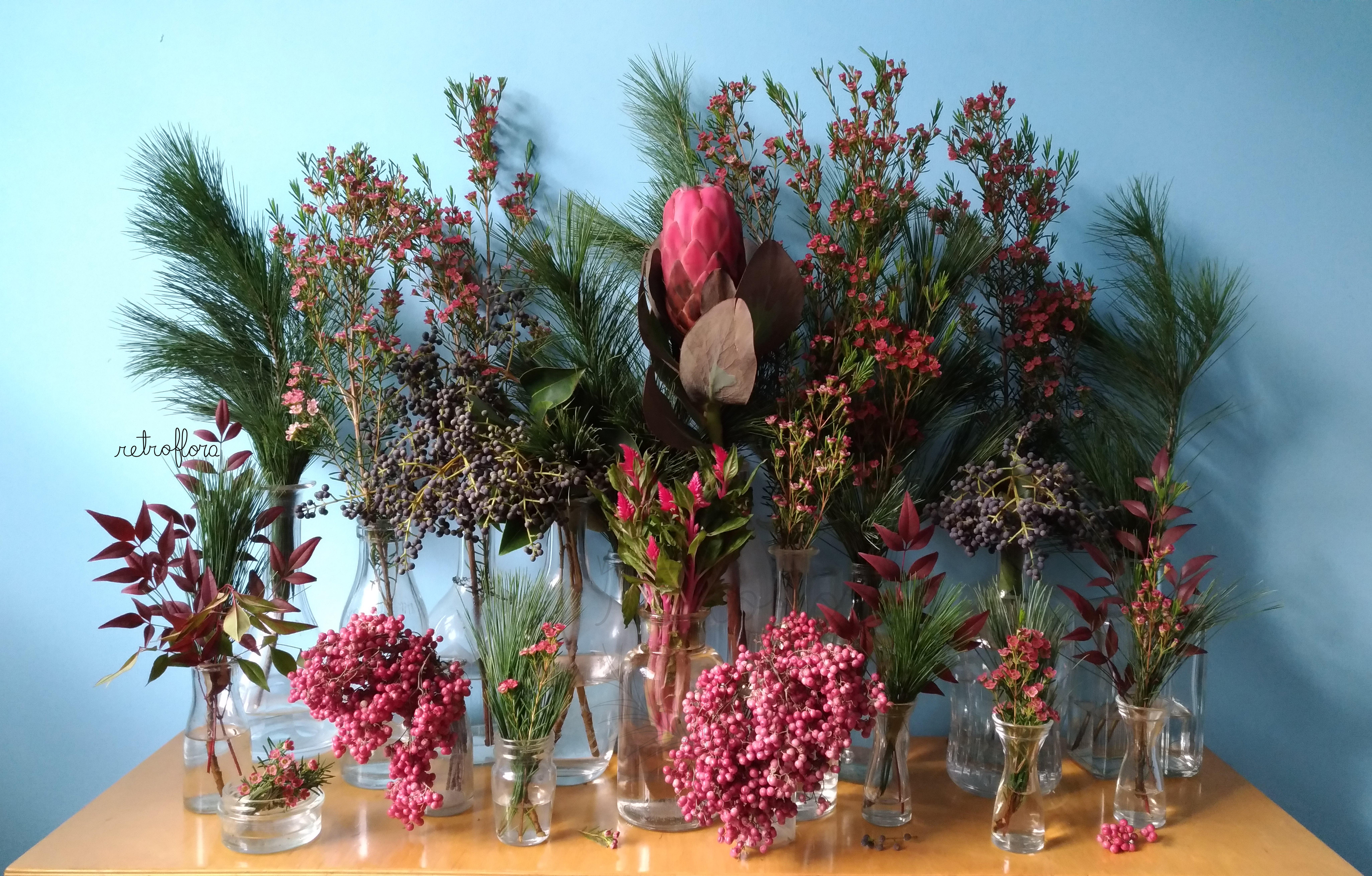 La Mensola Fiorita Pepe Rosa e Protea - Retroflora