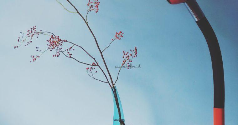 I Fiori incontrano il Design [Flowers meet Design]