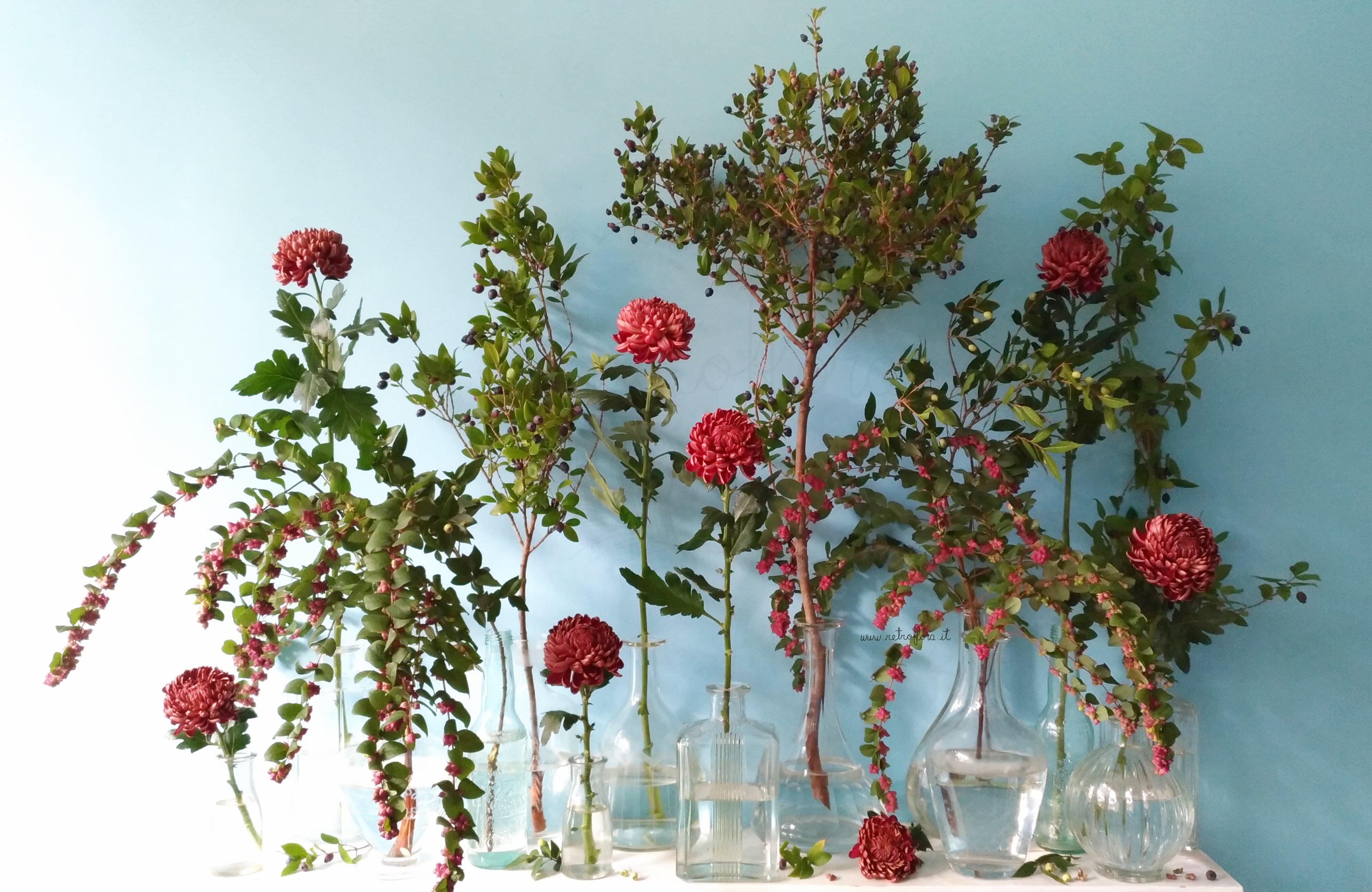 La Mensola Fiorita Crisantemi e Sinforicarpo - Retroflora