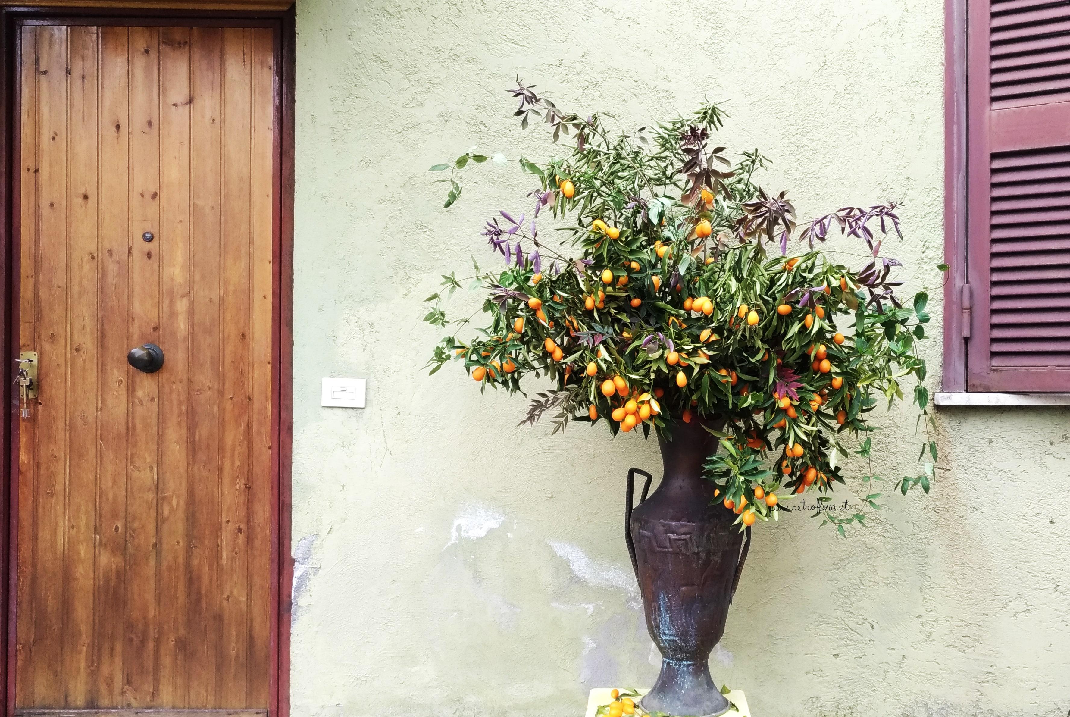 Fiori e Frutti, Composizione, Mandarino Cinese, Kumquat, la Bellezza ai Tempi del Coronavirus