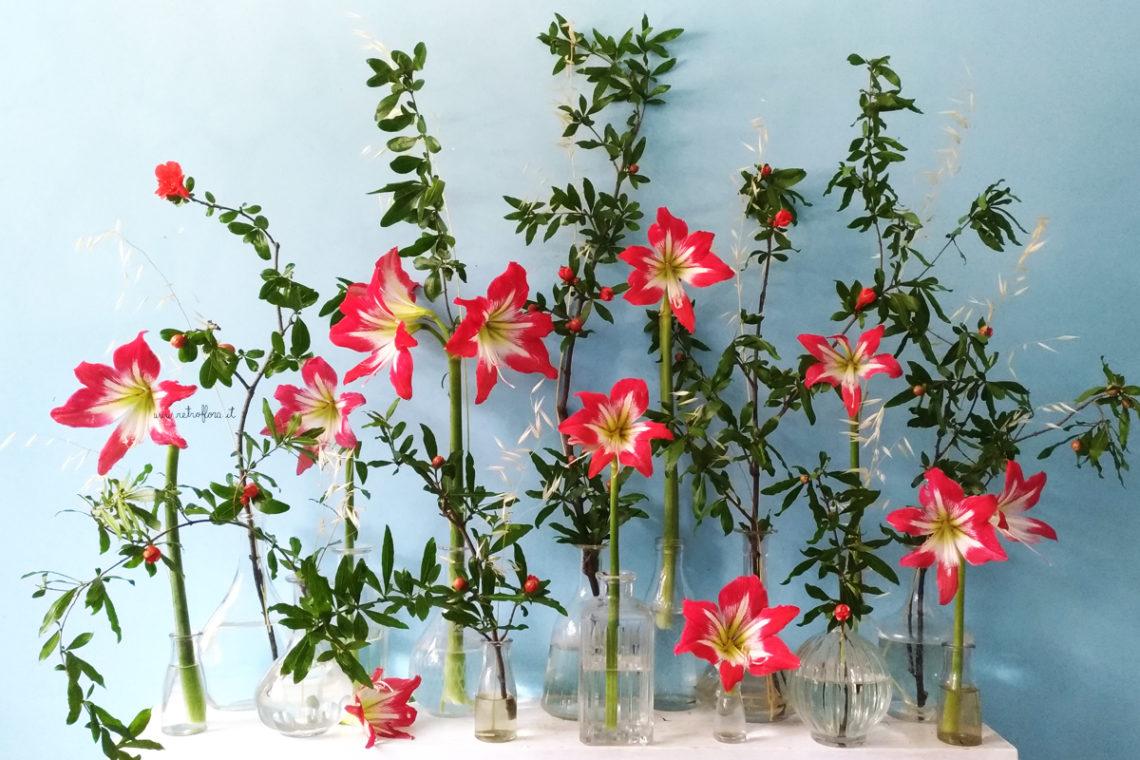 floral design e leggerezza, ippeastro, floral display, la mensola fiorita, retroflora